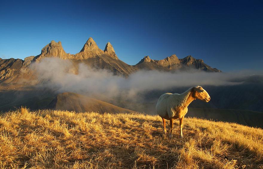 Karol-Nienartowicz-The-Polish-Adventurous-Mountain-Photographer41__880