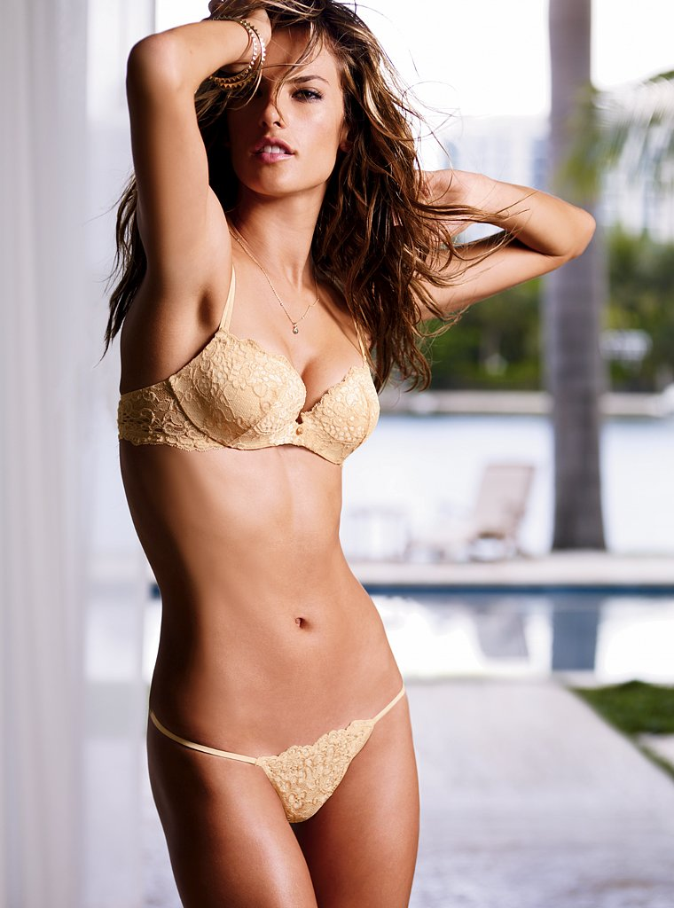 alessandra-ambrosio-for-2010-victoria_s-secret-photoshoot-16
