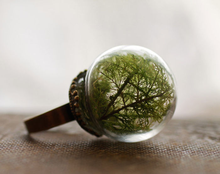 globe-terrarium-ring-62__700