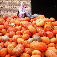 najblaznivejsie-ovocie (16)