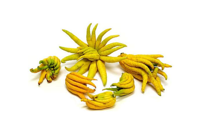 najblaznivejsie-ovocie (5)