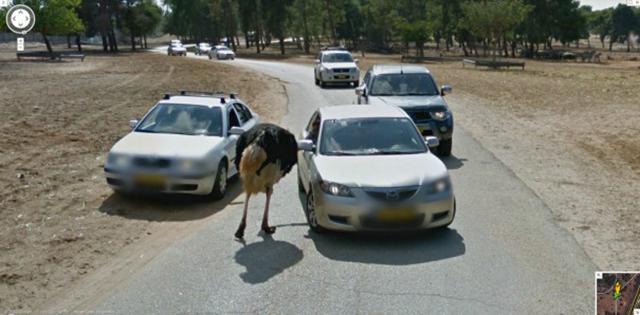 google-street-view-kamery (15)