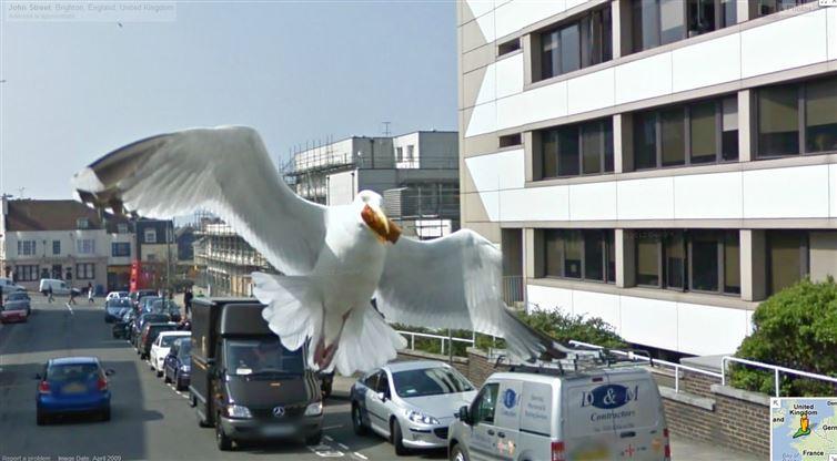 google-street-view-kamery (16)