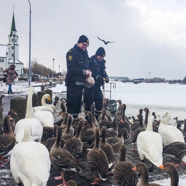policajti-pohodaci-reykjavik (2)