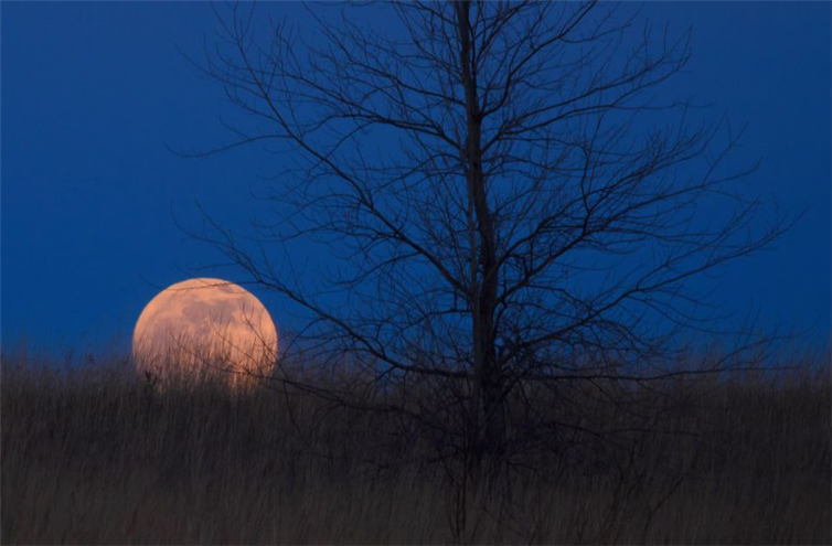 fotky mesiaca (11)