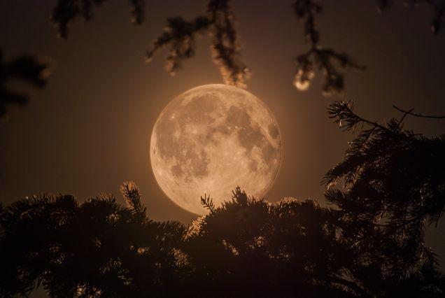 fotky mesiaca (2)