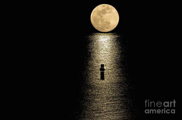 fotky mesiaca (5)