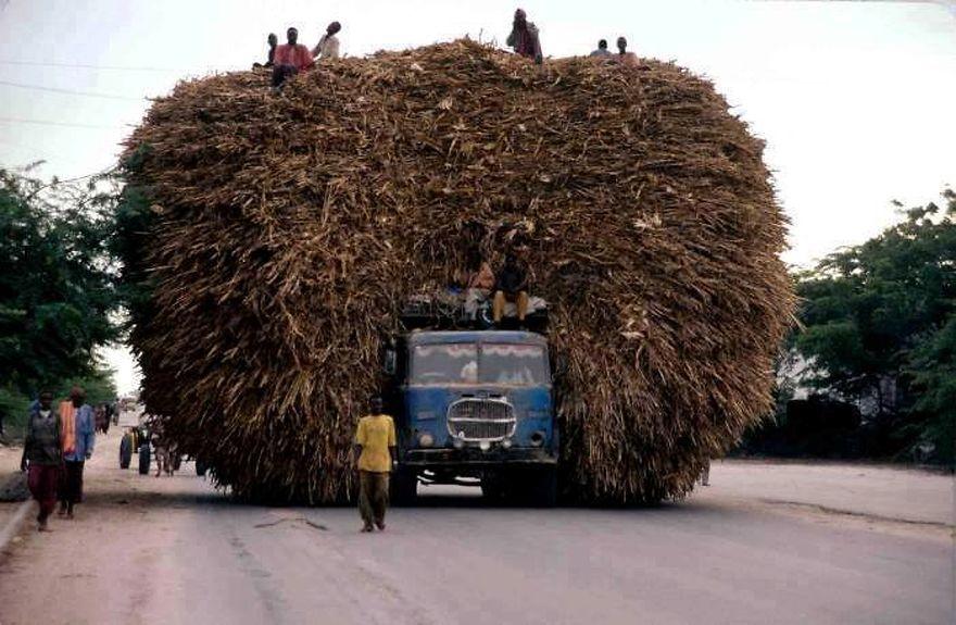 naplneny transport (8)