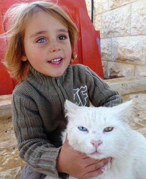 zvieratka ako ich majitelia (1)