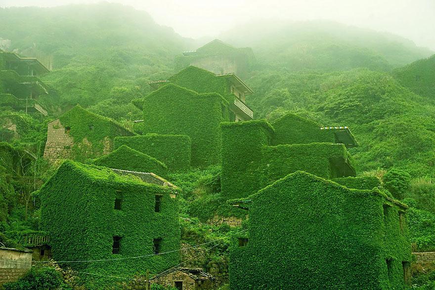 opustene budovy priroda (2)