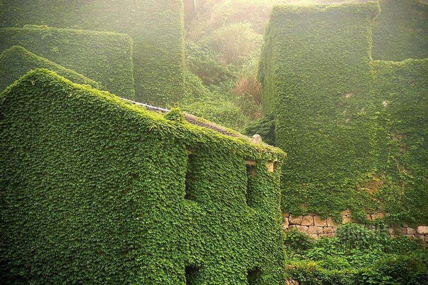 opustene budovy priroda (3)
