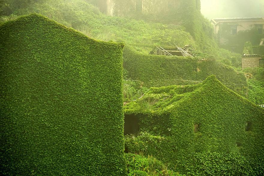 opustene budovy priroda (6)