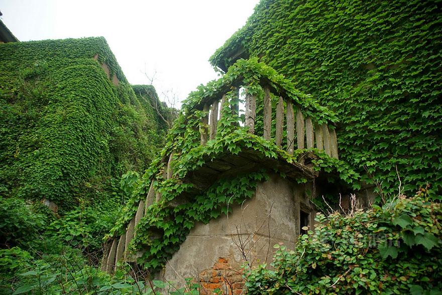 opustene budovy priroda (7)