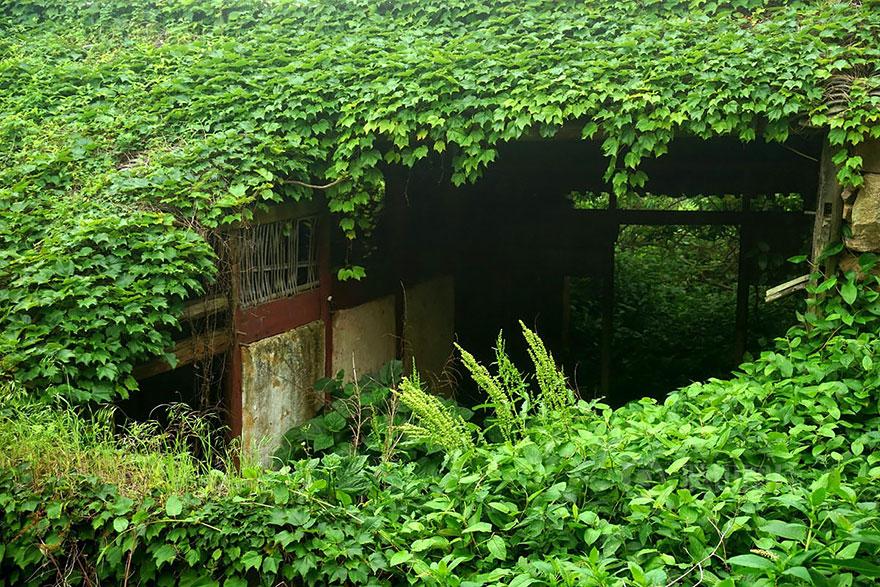 opustene budovy priroda (8)