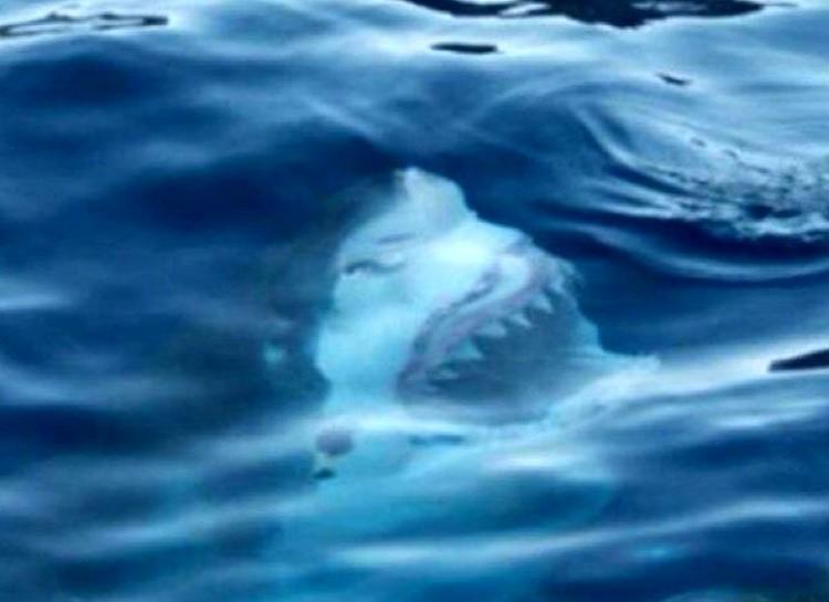 tajomstva oceanu (1)