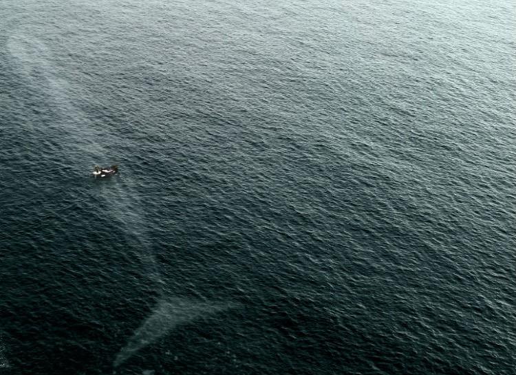 tajomstva oceanu (2)
