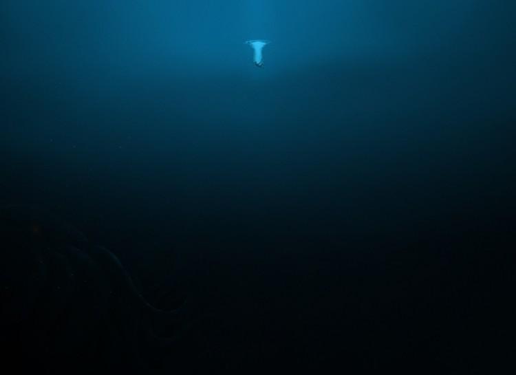 tajomstva oceanu (4)