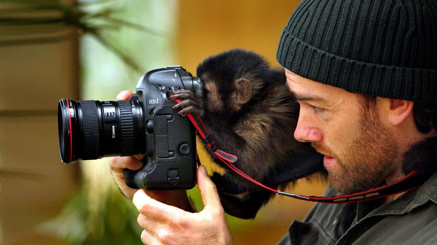 zvieratá fotografi (10)