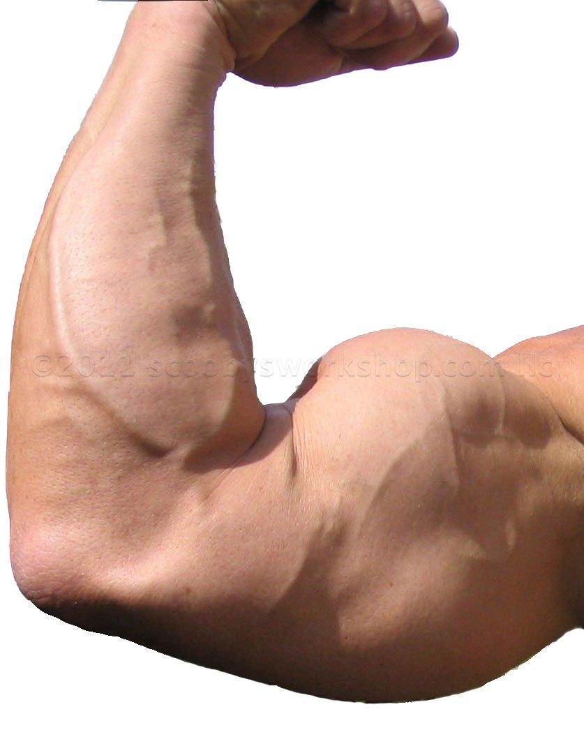 BodybuilderArmwtmk