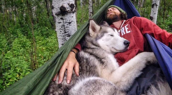 Chlapík zobral na výlet svojho psa, psík je najšťastnejší na svete