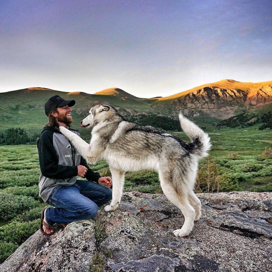 pes na výlete (10)