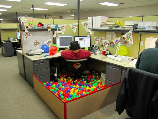 prank kancelaria (9)