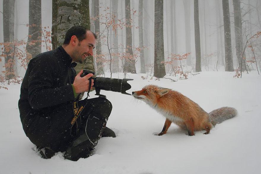 fotografi v prirode (1)