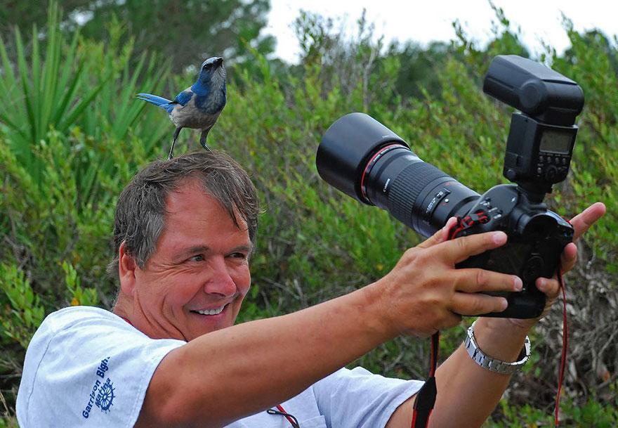 fotografi v prirode (10)