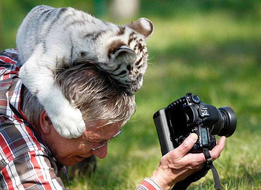 fotografi v prirode (12)