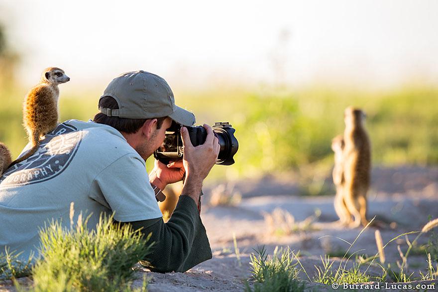 fotografi v prirode (20)