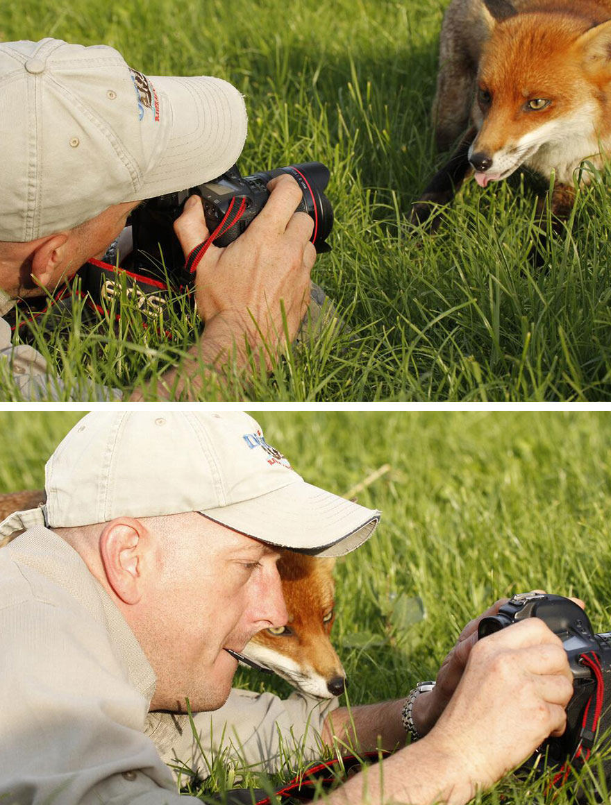 fotografi v prirode (3)