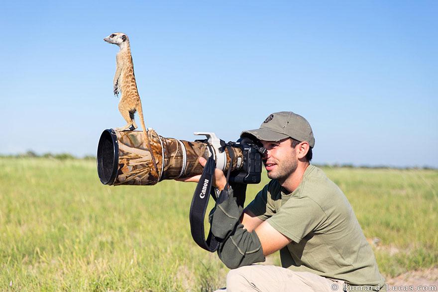 fotografovanie prírody (6)