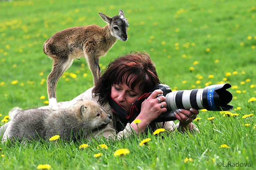 fotografi v prirode (7)