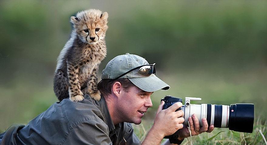 fotografi v prirode (8)
