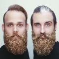 pozlatko brada (8)
