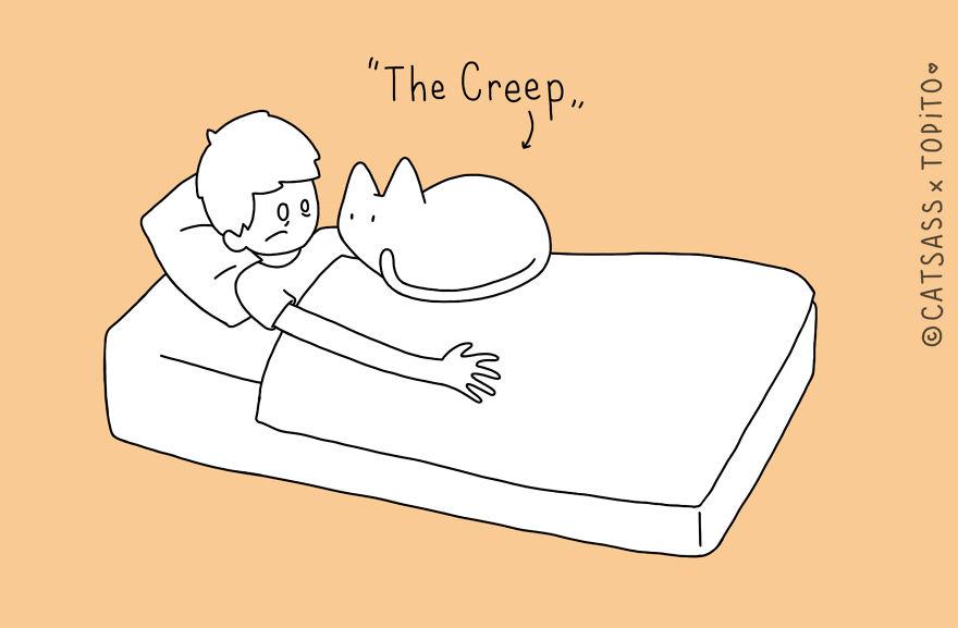 spánok mačiek s človekom (2)