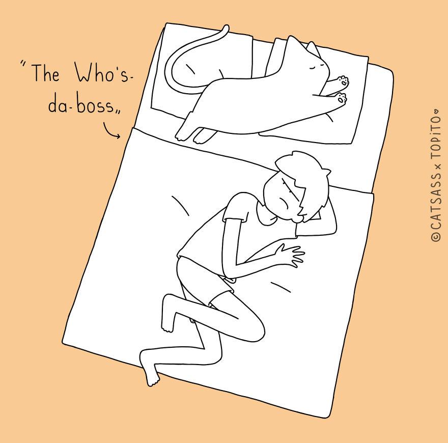 spiace polohy maciek (9)