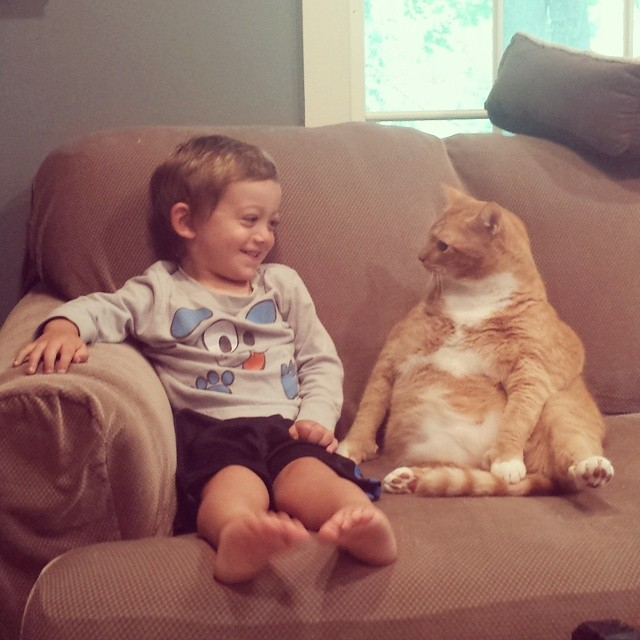 macka a chlapec (1)