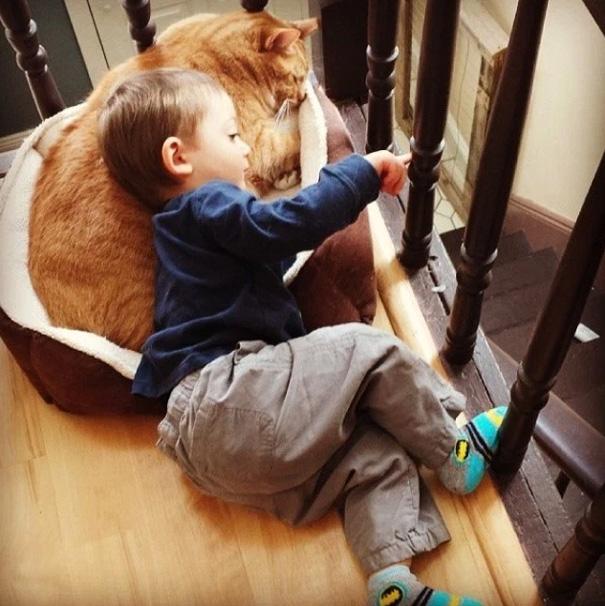 macka a chlapec (10)