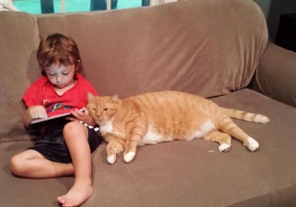 mačka a chlapec (3)
