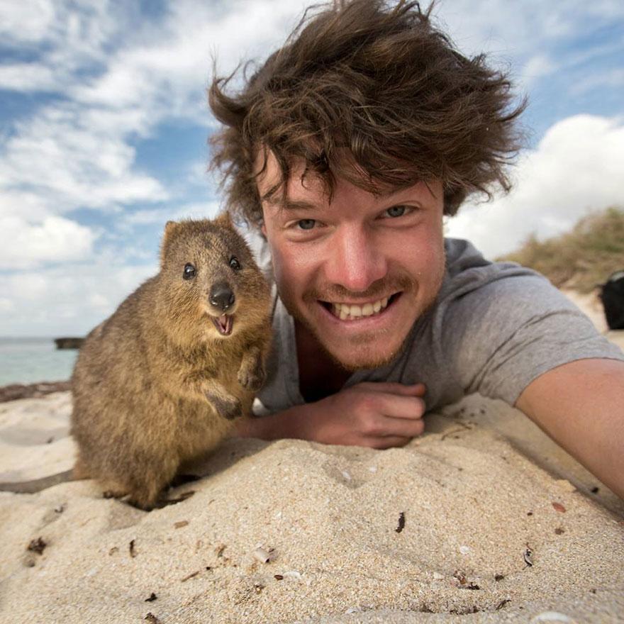 zvieracie selfie (1)