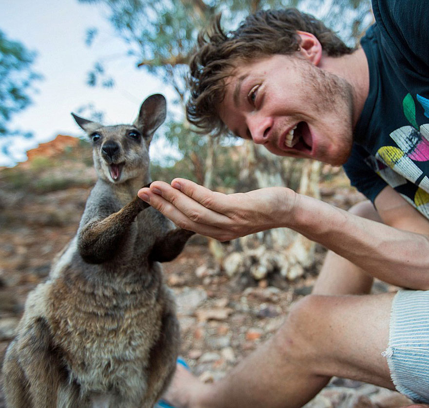 zvieracie selfie (5)
