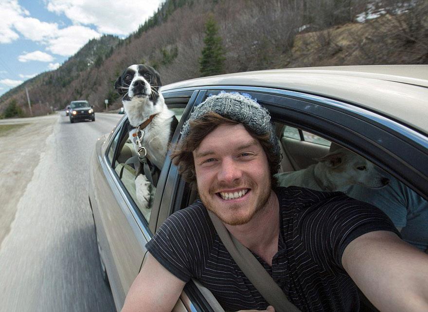 zvieracie selfie (6)