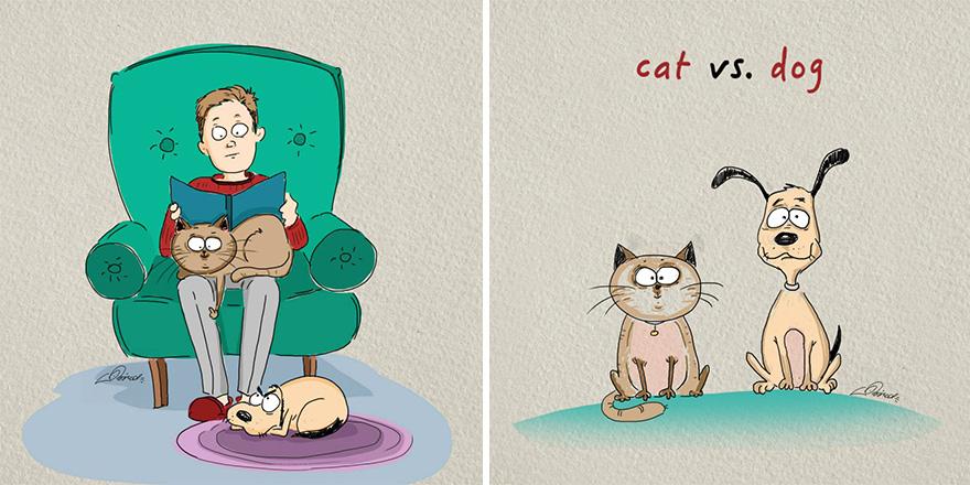 Mačky verzus psy (1)