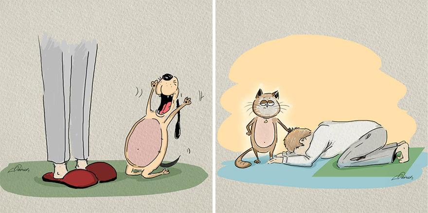 Mačky verzus psy (6)