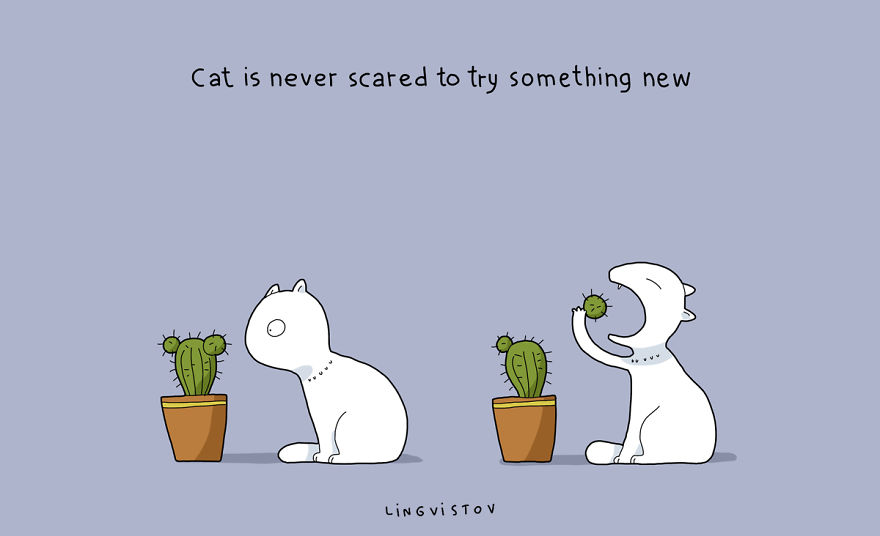 výhody vlastnenia mačky (11)