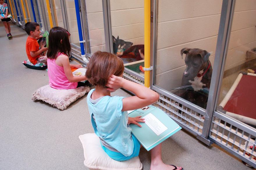 deti čítajú psom (2)