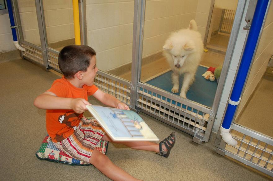 deti čítajú psom (3)