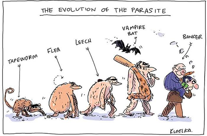 evolucia (11)