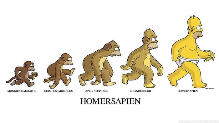 evolúcia človeka (13)